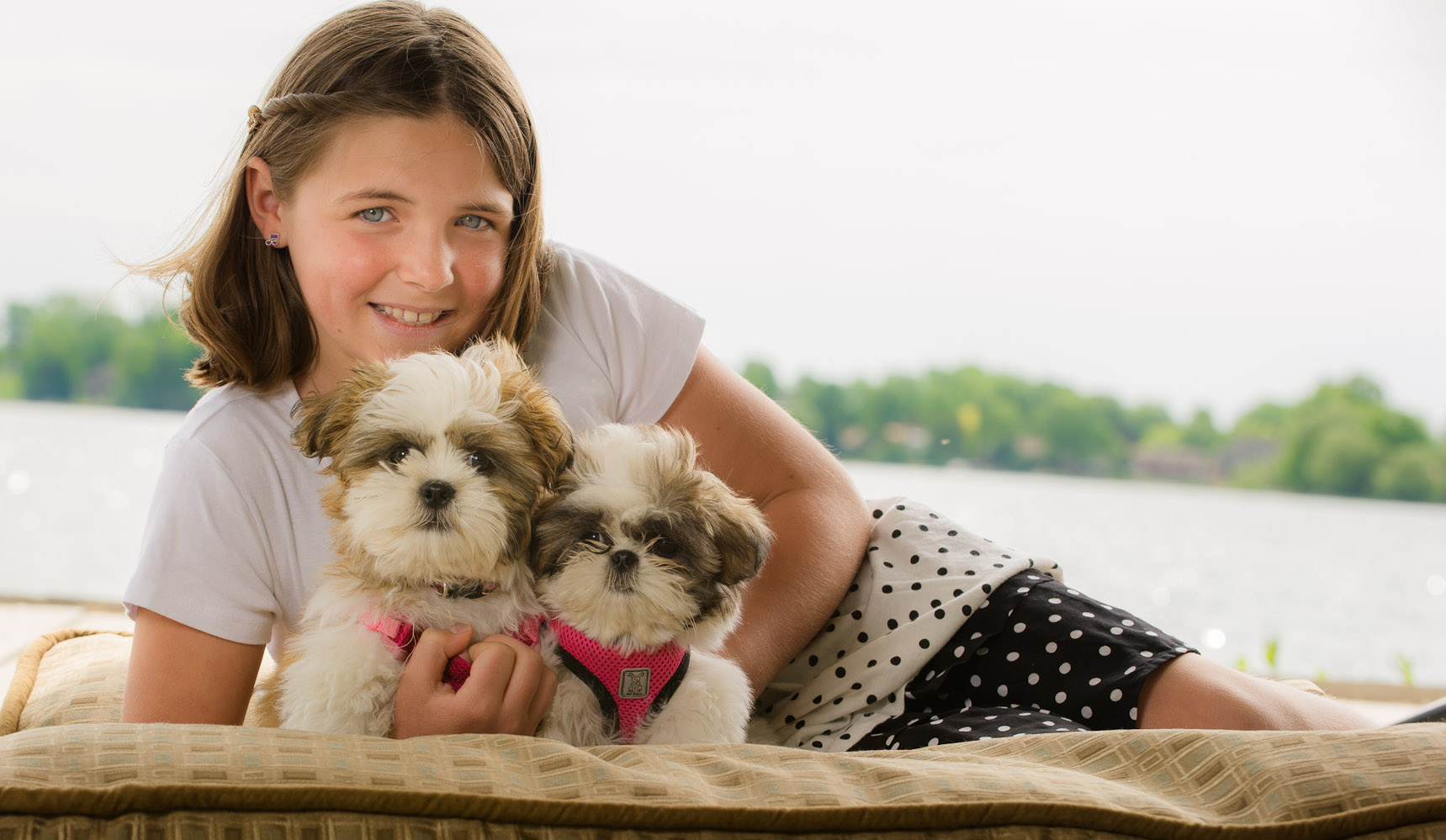Barrie Orillia Pet Photographer-25076.jpg